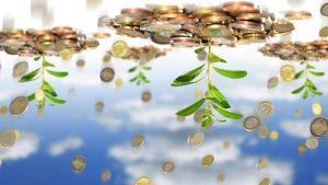 اساسنامه صندوق بیمه کشاورزی متناقض با قانون تجارت است/ دامداران عملا به دولت یارانه میدهند