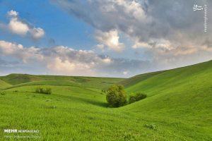دشت مغان در توسعه شبکه های آبیاری و زهکشی کشاورزی پیشرو است